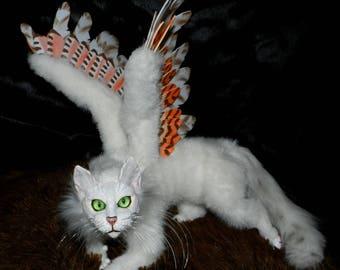 Winged cat Kilat