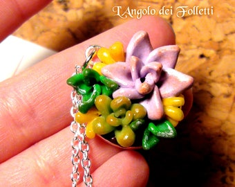 Succulent necklace plant