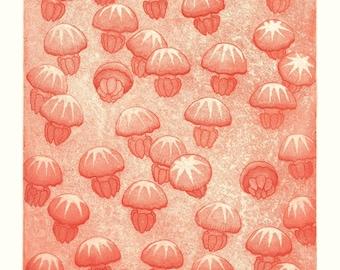 Moon jelly fish. Original etching