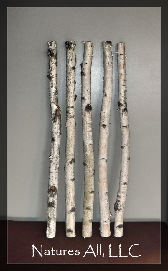 black and white decor decorative white birch white birch sticks 5 pc 3 by 30132