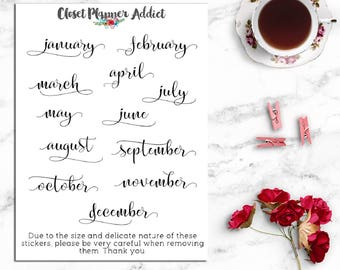 Months of the Year Planner Stickers | Monthly Planner Stickers | Mini Months of the Year Stickers | Script Font Stickers (DATE-004)