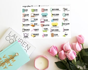 Spring Cleaning Planner Stickers | 30 Day Cleaning Challenge Stickers | 30 Stickers for ANY Planner