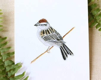 Sparrow Watercolor Fine Art Print Watercolor Bird Painting Bird Print Nature Prints Nature Art Watercolor Art Home Decor Gifts  Bird Watcher