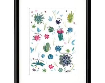 Succulents Field Guide