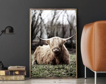 Highland Cow Print, Highland Print, HIghland Printable, Highland Cow Art, Cow Portrait, Cow Picture, Scottish Cow, Highland Cow Wall Art