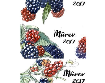 Blackberry Jam Labels, canning labels customizable, blackberry jam, handmade stickers, watercolor labels, cans labels, blackberry stickers