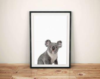 Koala Bear Print-Baby Koala Bear Print-Bear Nursery Wall Decor-Bear Printed Art-Childs Print