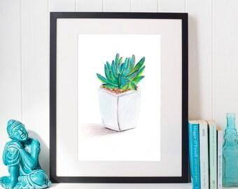 Best Office Plants, Green Succulent, Office Plants, Watercolor Print