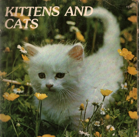 Kittens and Cats My First Animal Library - Photographic Illustrations - 1979 - Vintage Kids Book