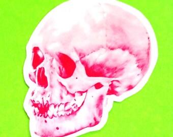 Pink Skull Variant Logo Skeleton Rockabilly Rockabella Punk Brand Waterproof Vinyl Sticker