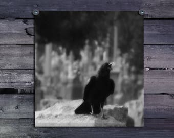 Black And White Cawing Crow, Gothic Raven Decor, Blackbird, Photograph, Industrial Art, Urban Graveyard Bird, Monochrome - Ferocious Caw