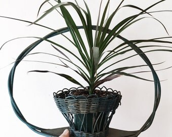 Victorian Planter Basket