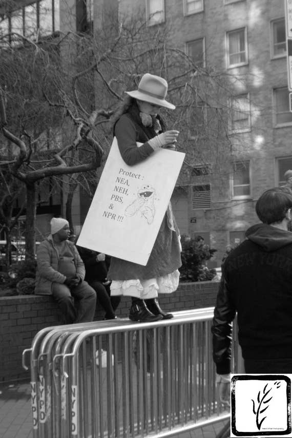 """Protect the Arts,"" New York City Women's March, 2017."