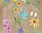 Wildflower Chart on Kraft | Katie Daisy Art | Floral Painting | Wall art | 8x10 | 11x14