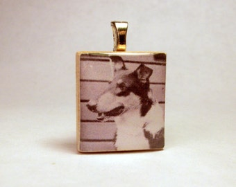SMOOTH COLLIE Pendant / SCRABBLE / Charm / Necklace / Dog Jewelry / Tri-colored