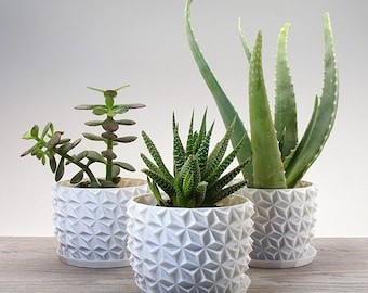 Set of 3 Small Succulent Planters with Drip Trays - Plant Pot for seed starting or Modern Geometric Herb Garden Planters