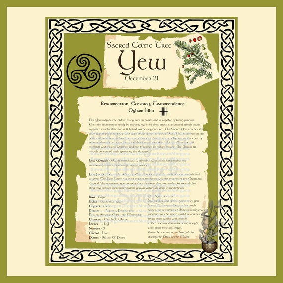 YEW CELTIC SACRED Tree - Digital Download, Book of Shadows Page,Grimoire, Spells, White Magick, Wicca, Witchcraft, Herb Magic