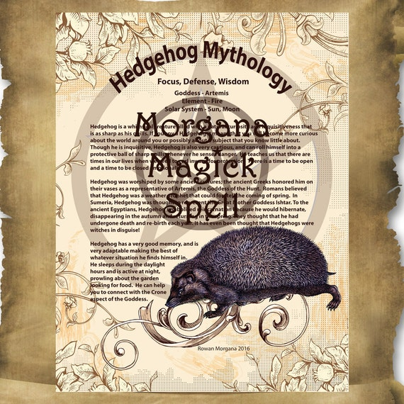 HEDGEHOG MYTHOLOGY