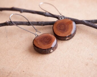 Wooden Earrings with Resin - Brown wood earrings - Woodland Tree Branch Earring - Siberian peashrub