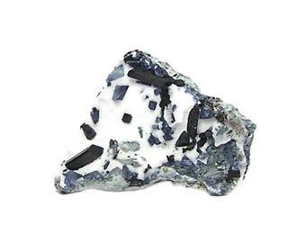 Benitoite and Neptunite on White Natrolite Rock Matrix Rare Blue and Black Crystals Collector's Mineral Specimen California State Gemstone