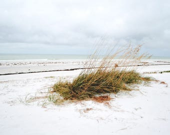 ocean landscape - siesta key white sand beach photography