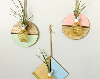 Circle or diamond wood wall hanging with pineapple and air plant/ Tillandsia air plant/ wall decor-pink/blue/mint and wood air plant display