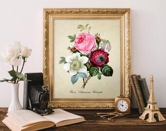 Vintage Botanical Print, Roses Print, Rose, Anemone Print, Clematis Print, Bouquet Print, Natural History, Rose Botanical Illustration Fl067