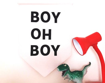 Wall banner - wall hanging - Banner - Pennant Flag - Boy Oh Boy - Boys Room Decor - Boys Bedroom