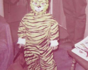 Original 1960's Halloween Tiger Snapshot Photograph - Free Shipping