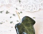 Green ivy brooch,  Green leaf, real  ivy leaf, resin jewelry, spring jewelry.