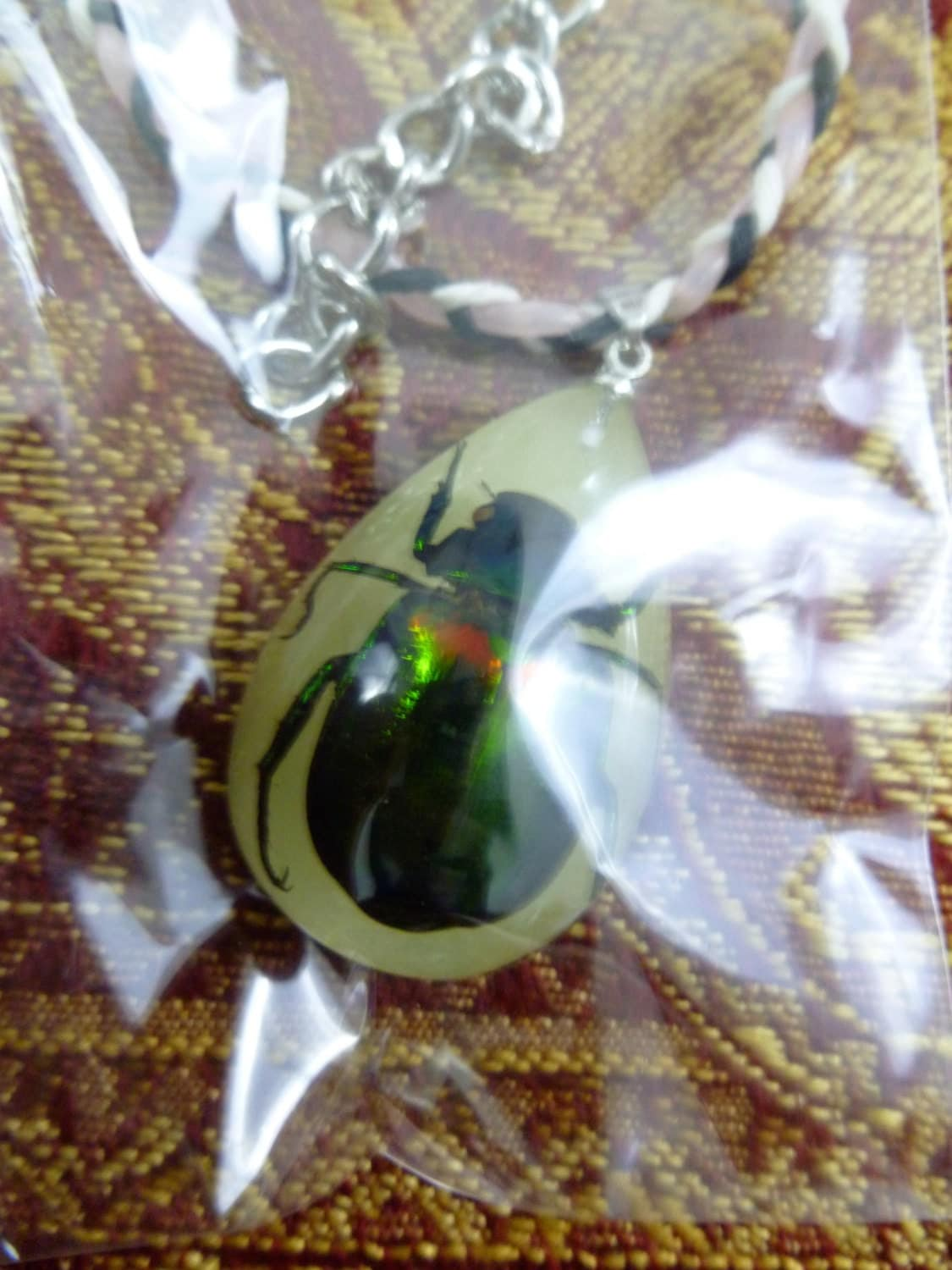 Japanese Beetle Real Beetle in Lucite your choice Amber or Glow in the Dark and your choice of necklace