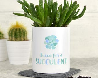 Succulent plant pot, funny plant pot, cactus pot, personalised succulent plant pot, plant lover gift