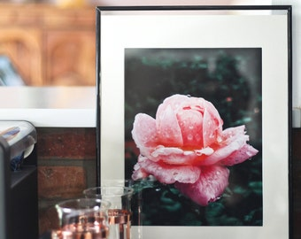 Flora No. 1 | 8x10 Giclee Print