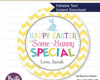 Editable Easter Tag , Printable Party Favor Sticker, Cute Some-Bunny Special Tag, Round or Square Topper, Instant Download -D824 HOEA1