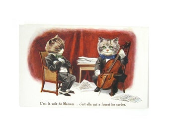 VINTAGE CAT POSTCARD - very rare and collectable vintage postcard / cat playing cello