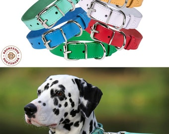 Leather Dog Collar, Puppy Collar, Girl Dog Collar Small Medium Large Pink Blue Red Green White