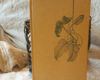 Indoor Water Gardener's How-To Handbook, H. Peter Loewer, Illustrated, Bulbs Plant Hydroculture, Apartment City Container Garden, Botanical