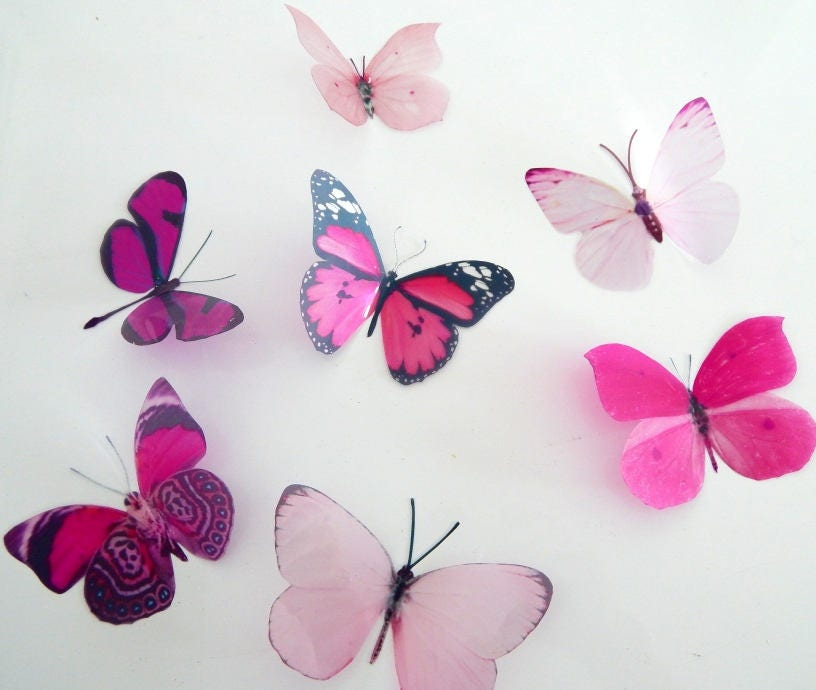 Pink collection of natural butterflies, 3d butterflies wall decor ...