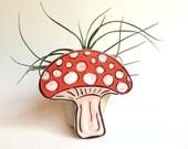 Air Plant Planter, Mushroom Mini Planter, Air Plant Holder, Handmade Planter, Tillandsia, Airplant, Gift, Mushroom, Wedding Favor