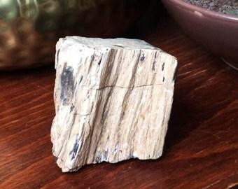 Beautiful Fossilized (Petrified) Wood Crystal Specimen
