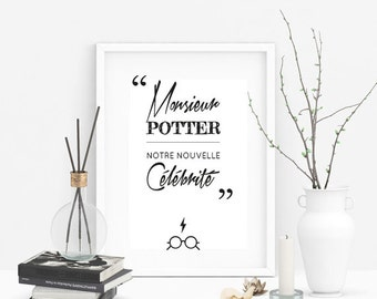 "Harry Potter ""Mr potter, our new celebrity"" quote"