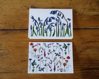 Floral pack of 2 Greetings Cards featuring flower illustrations by Alice Draws The Line. Flowers and Bluebell card designs; blank inside