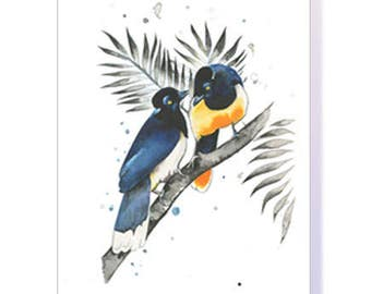 Jay Birds Greeting Card