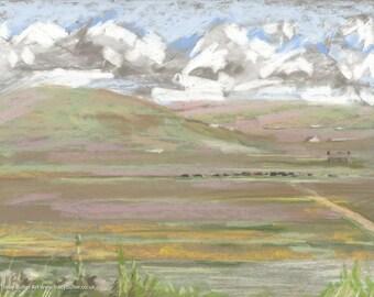Orkney Fields  | original painting | pastel | soft pastel | chalk pastel | orkney | scotland | scottish island | landscape | Tracy Butler