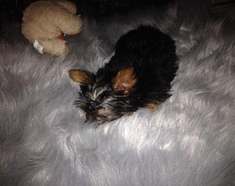 Dog Bed Silver Fur Faux Fur