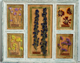 Pressed Flowers, pressed botanicals, Herbarium, 15,4x18,4 inches, (39x47 cm) Framed, Pressed Flower Art,press flowers framed, dried herbs