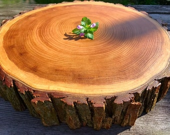 Stunning Wood Cake Stand, Wooden Cake Stand, Wood Slice Cake Stand, Wedding Cake Stand, Rustic Wedding, Tree Slice Cake Stand, Wedding Cake