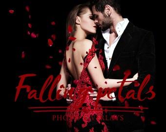 30 Falling Petals Photo Overlays, photoshop overlays, valentine overlays, red rose petals, rose overlays