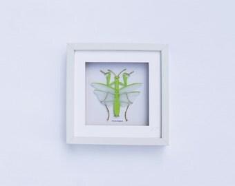 Paper Entomology – Praying Mantis
