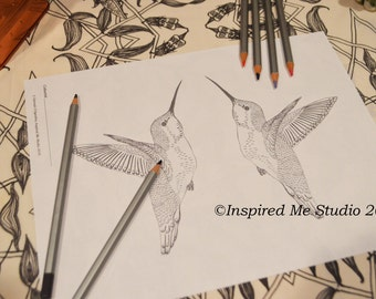 Mirrored Hummingbirds Coloring Page, Greyscale Digital Download